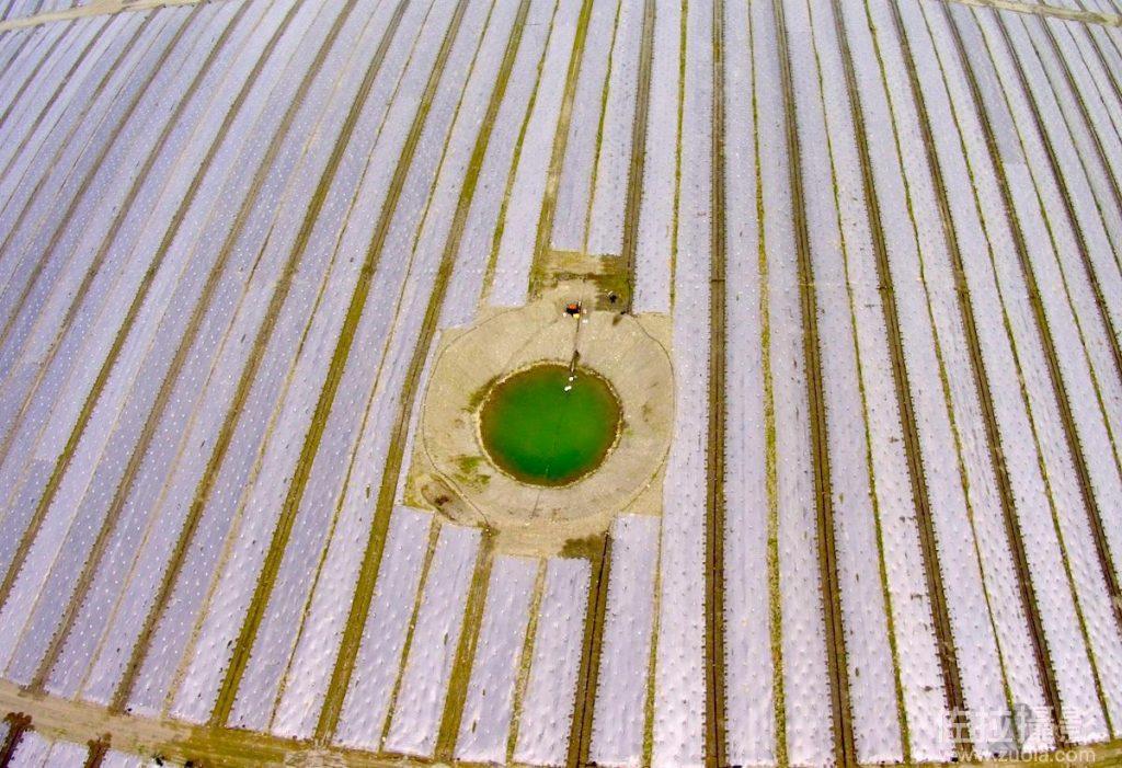 河床上的西瓜田和水井